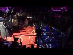 Cabaret north cage fighting – YouTube